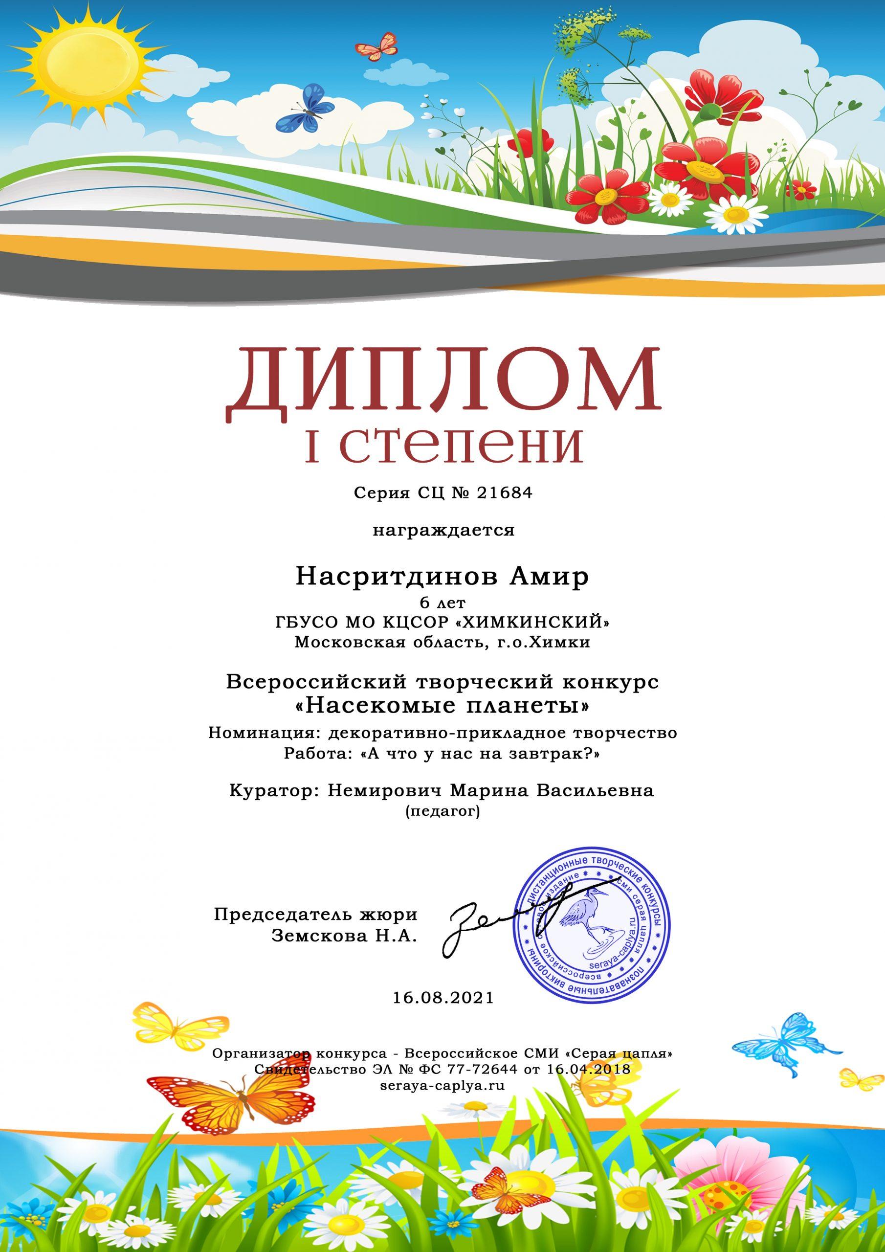 Диплом Насритдинов